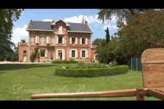 Visite, Domaine du Buc