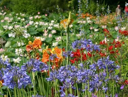 jardin-des-martels-vivaces-7